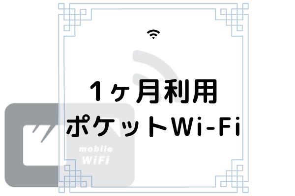 ポケットWi-Fi 1か月利用
